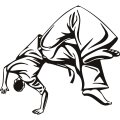 Martial Arts Somersault decal sticker