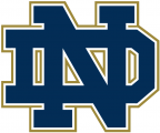 Notre Dame Fighting Irish 1994-Pres Alternate Logo 09 iron on transfer