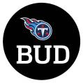 Tennessee Titans 2013 Memorial Logo iron on transfer