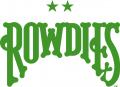 Tampa Bay Rowdies Logos 02 iron on transfer iron on transfer