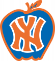 New York Knicks 1979 Alternate Logo decal sticker