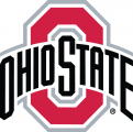 Ohio State Buckeyes 2013-Pres Primary Logo iron on transfer