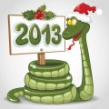 Personalized Christmas Snake DIY iron on stickers (heat transfer) 3