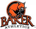 Baker University logo 04 iron on sticker
